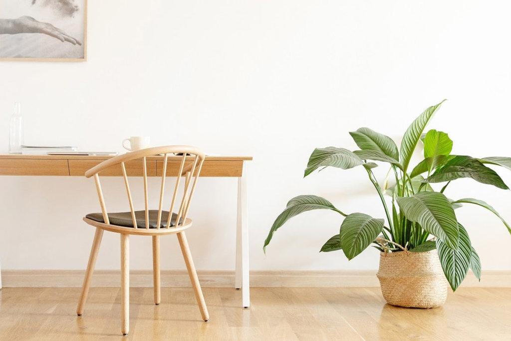Kako učinkovito in udobno opremiti svoje delovno okolje?
